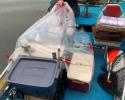Jax Tent at Storey